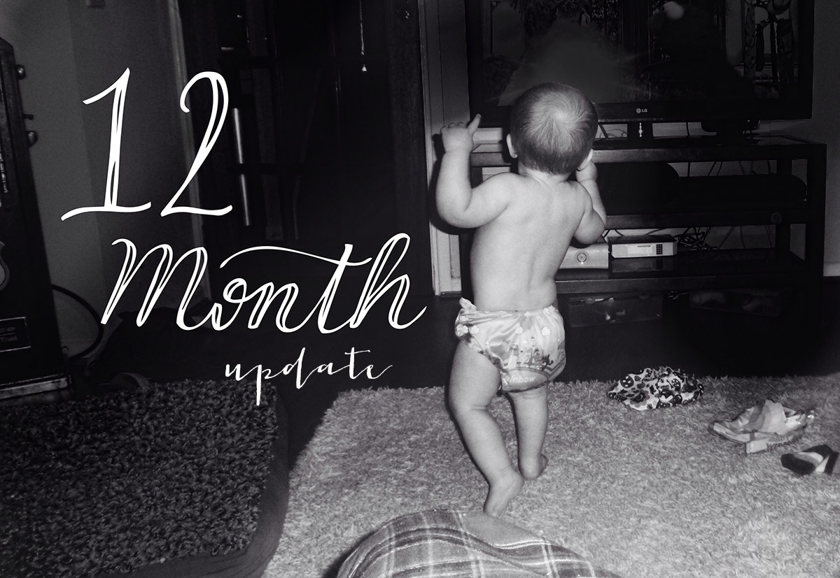 Archie's 12 month update