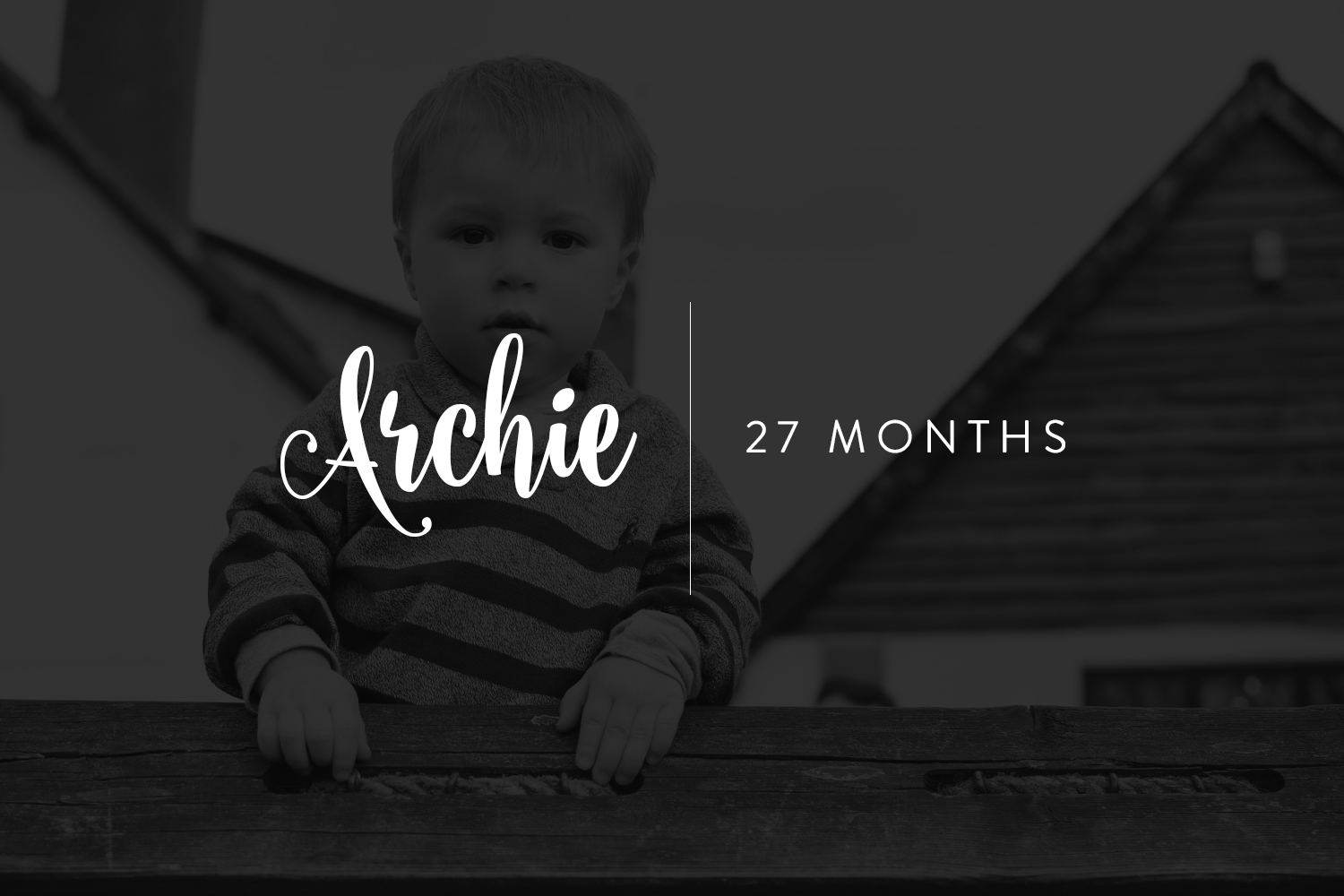 Archie's 27 Month Update - Toddler standing at top of climbing frame, portrait shot with Nikon D3300