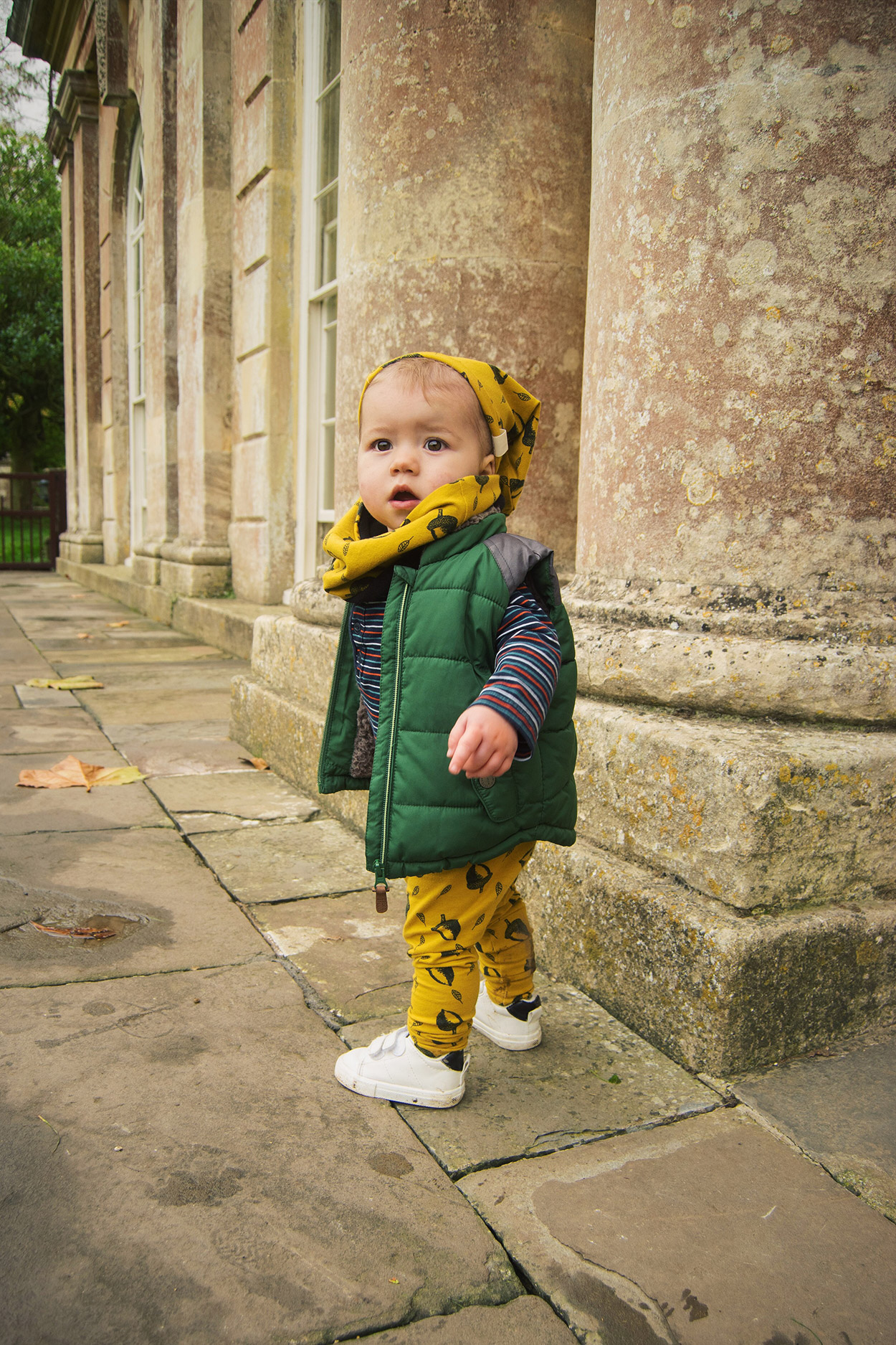 Toddler boy wearing mustard acorn leggings, beanie and snood by Bear & Babe walking in front of the orangery windows at Dyrham Park, Bath