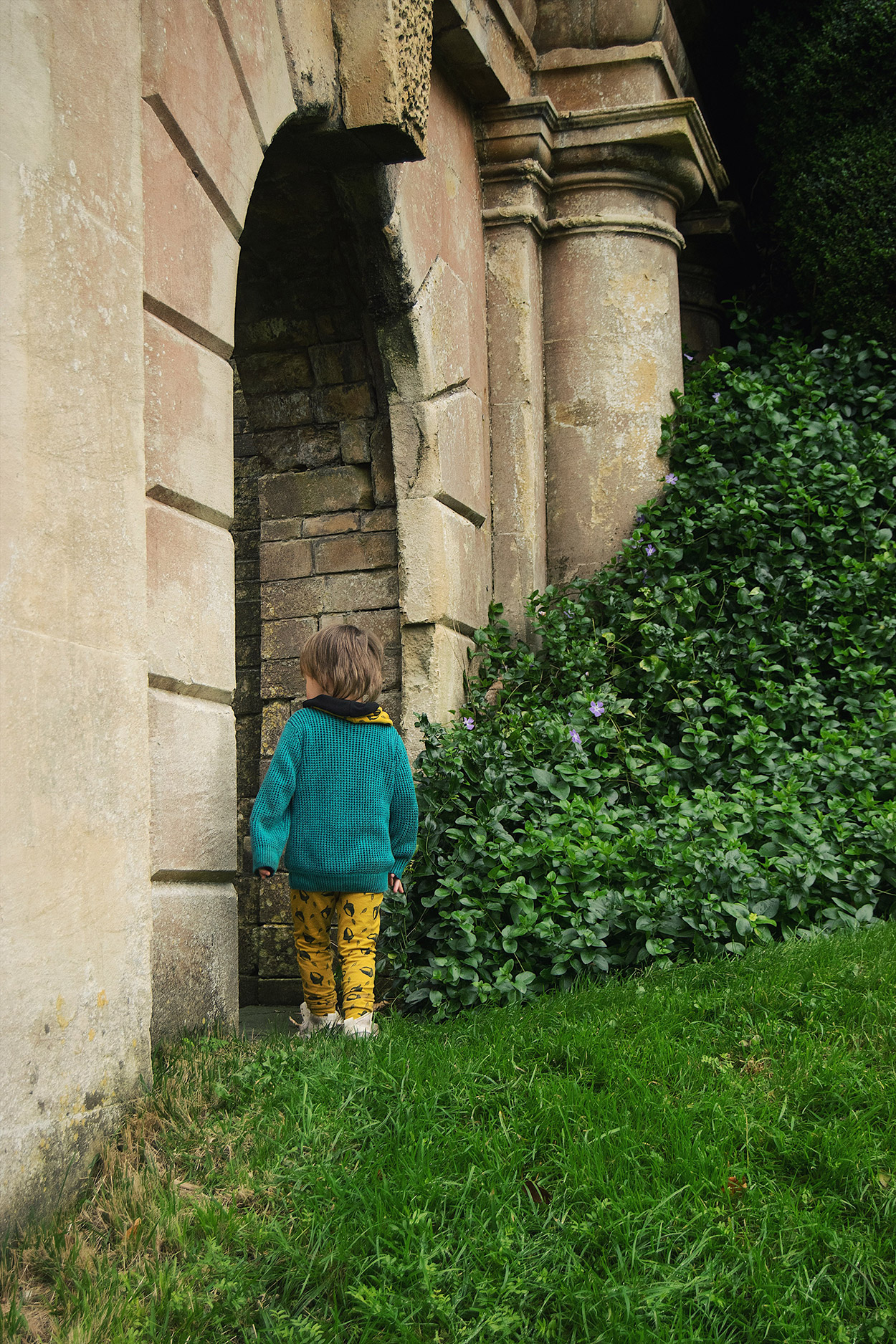 Young pre-school aged boy wearing mustard acorn Bear & Babe leggings and snood with green Next jumper exploring the face in the bushes at Dyrham Park house