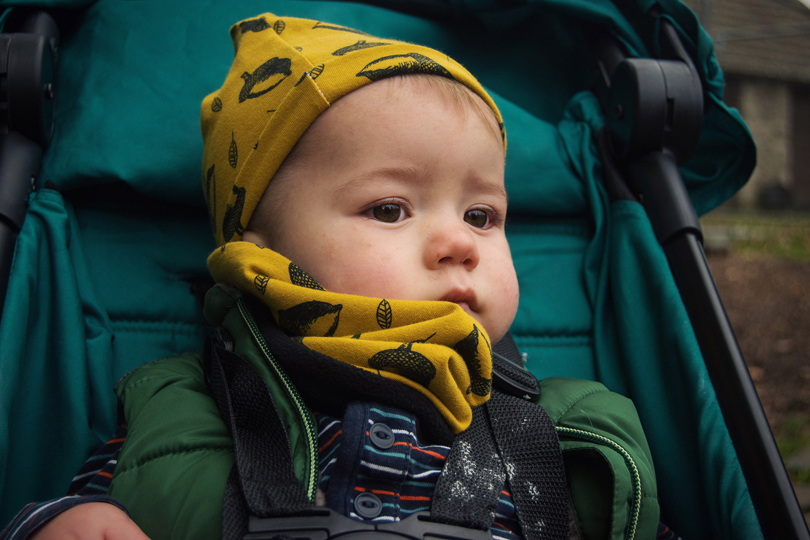 Close-up of toddler wearing Bear & Babe mustard acorn beanie and snood on an Autumn day in City Jogger pushchair at Dyrham Park, Bath