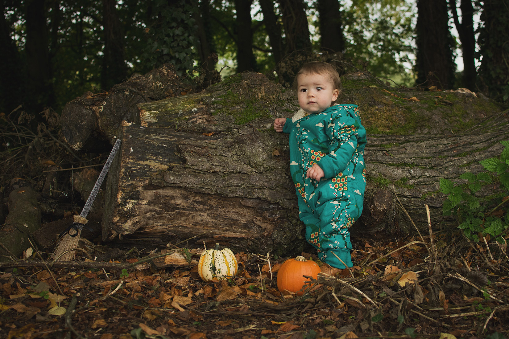 Young toddler wearing Little Green Radicals fair-trade and organic midnight peacocks snowsuit whilst walking in Autumn at the park with broomsticks and a pumpkin ready for Halloween, Wiltshire
