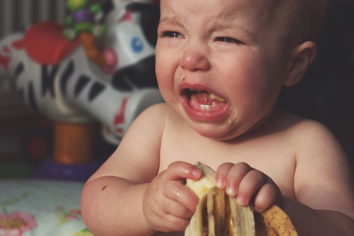 Close-up of toddler having a tantrum over banana split in half