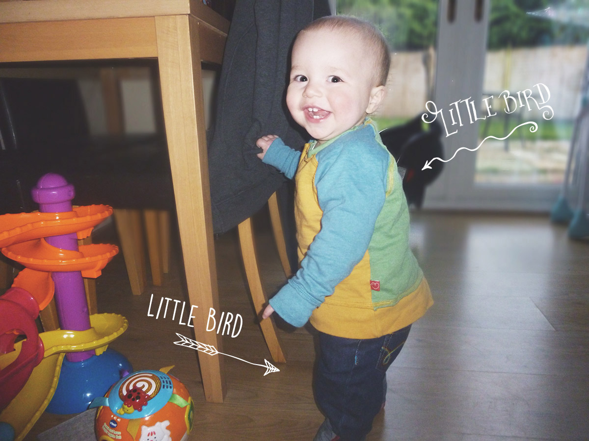 12 month old wearing outfit from Little Bird by Mothercare