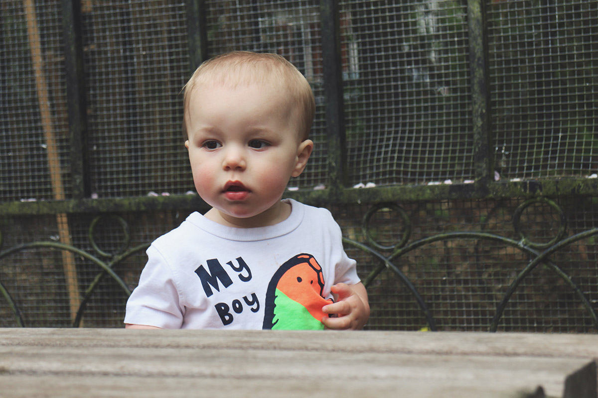 Fashion Friday #17: Toddler wearing Next popsicle t-shirt at Town Gardens