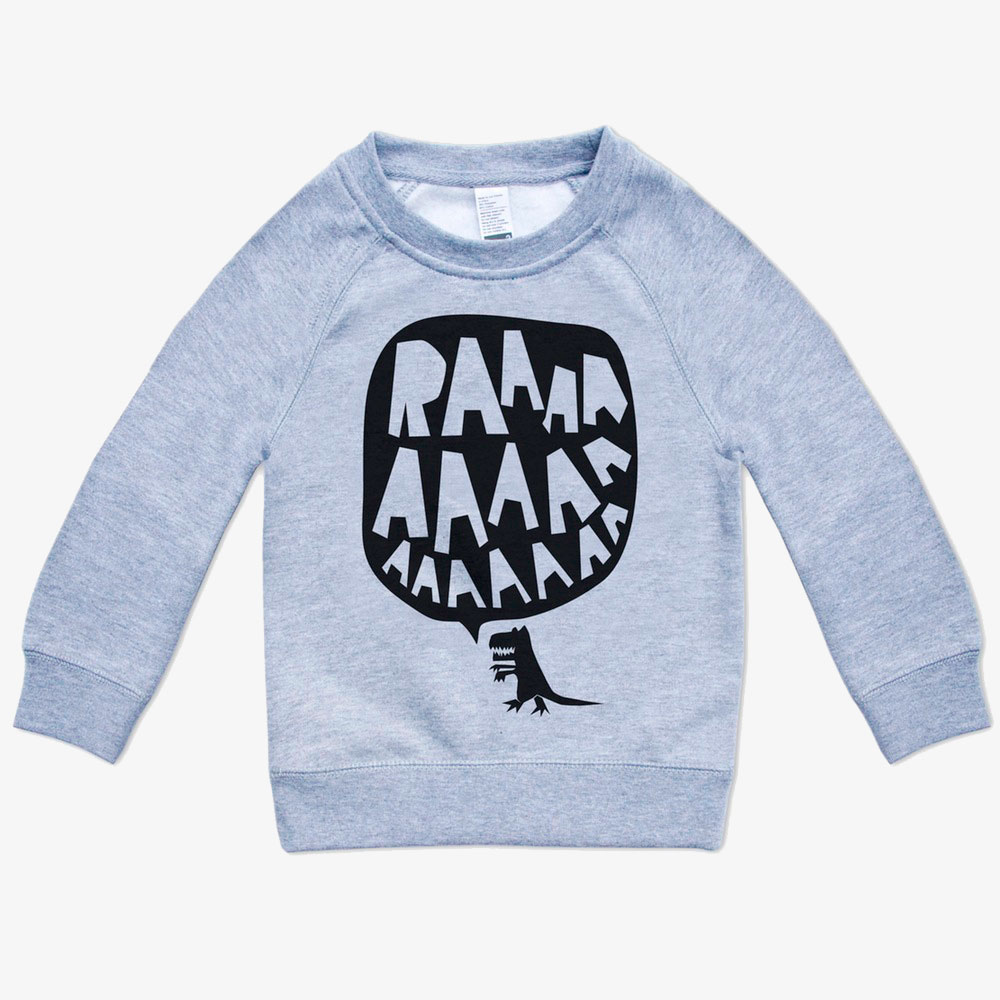 Jaxon James dinosaur rawr grey sweatshirt