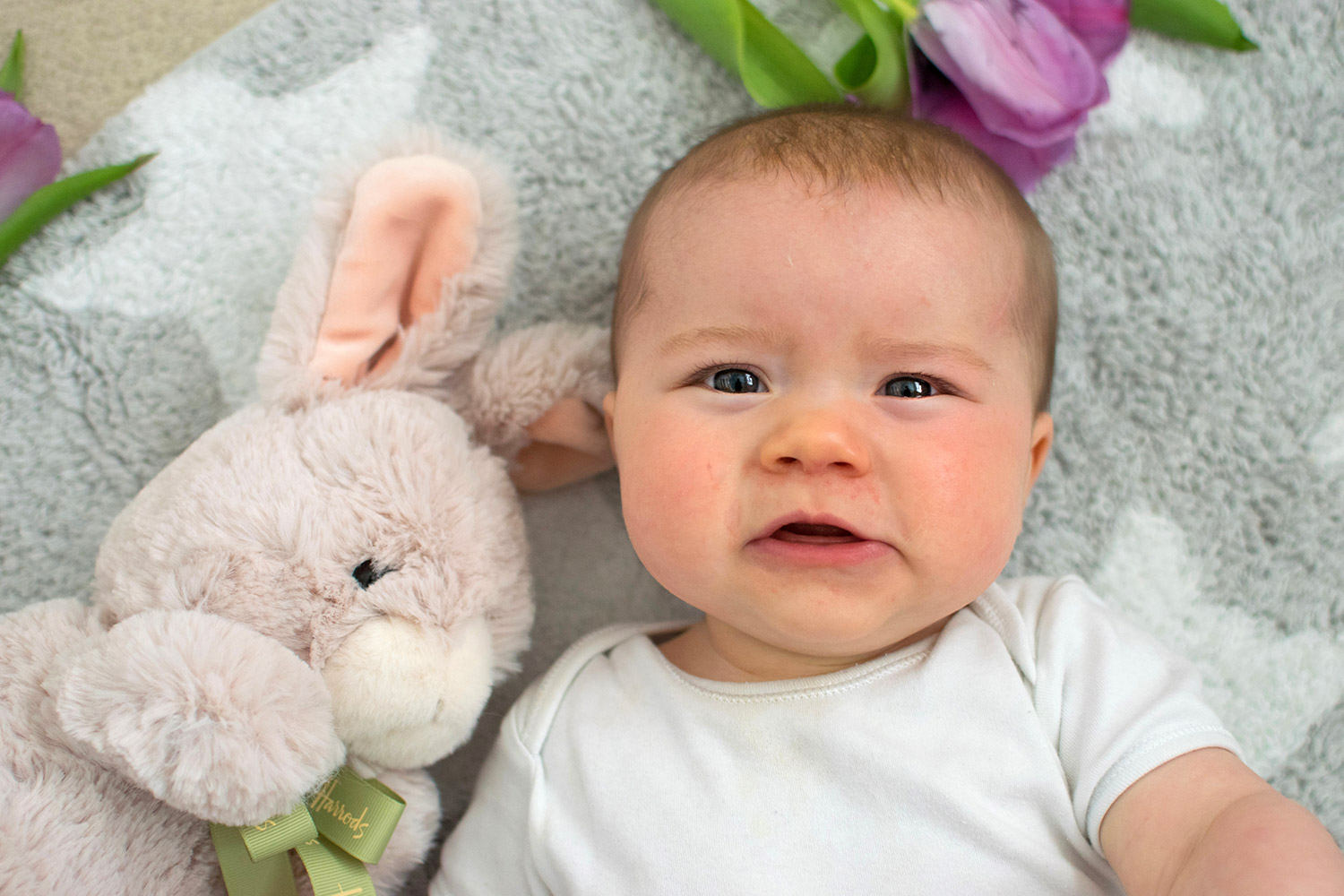 Baby Jesse Blue at 9 months old - Baby boy with Harrods Easter bunny cuddly soft toy and purple tulips for Easter