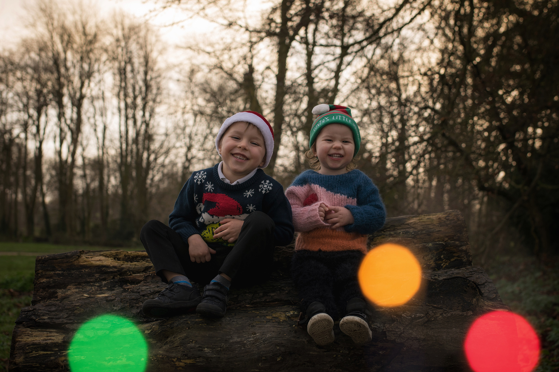 Family with two brothers wearing The Animals Obervatory, Maed for Mini and Rylee and Cru posing for Christmas photos with teddy bear wearing festivity's hats in woodland