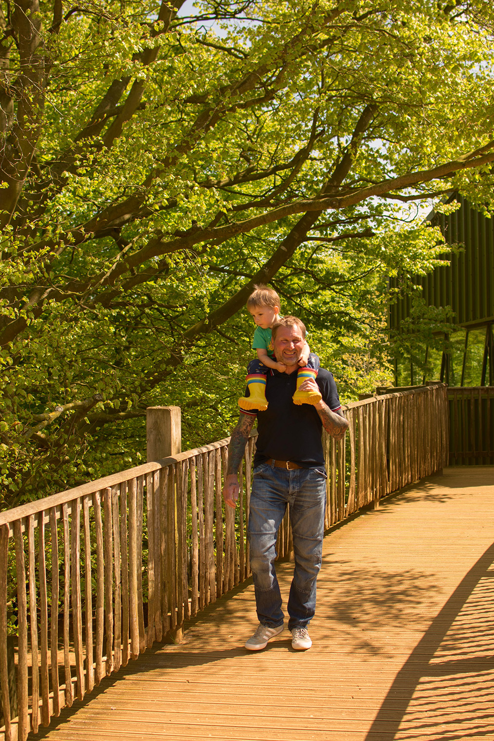 Grandad by the giraffe enclosure with 3 year old grandson on shoulders at Cotswold Wildlife Park with family