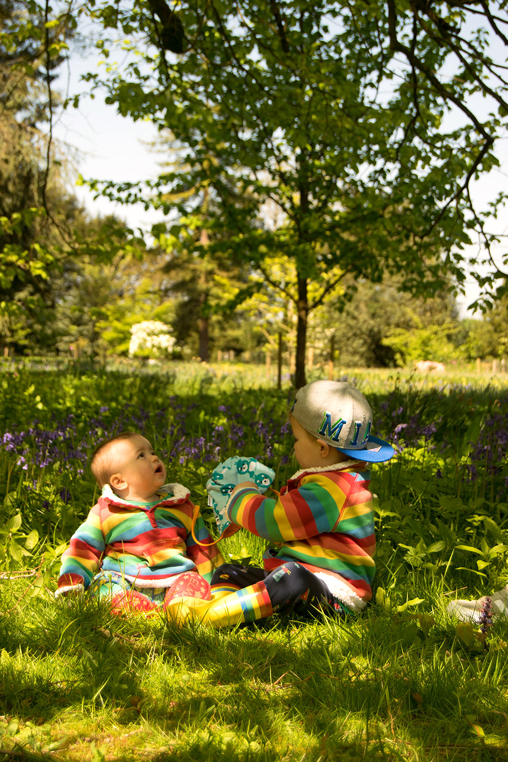 Two brothers sitting under the tree on sunny day wearing Frugi rainbow snuggle fleeces at Cotswold Wildlife Park with family
