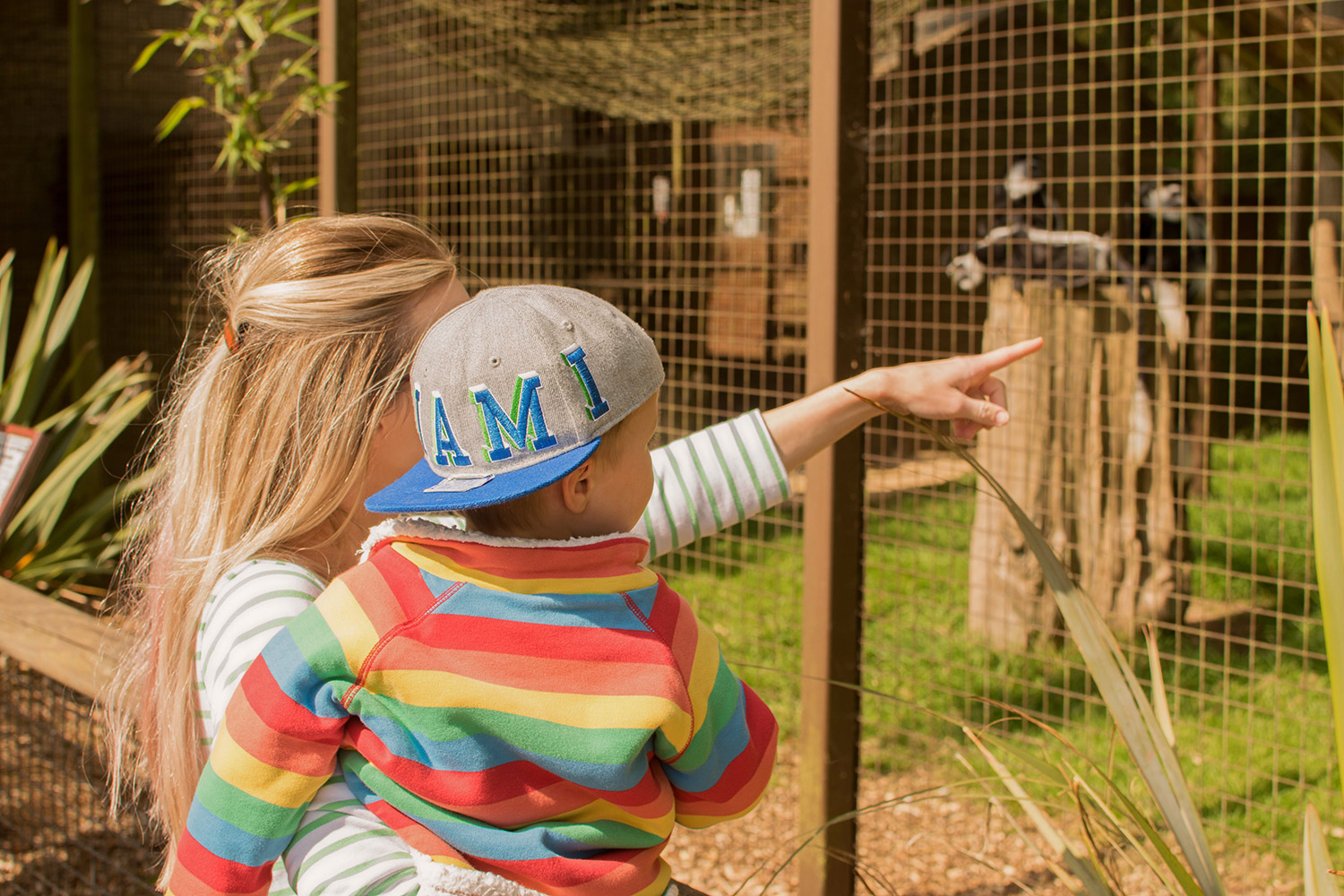 Mum looking at the monkeys holding son wearing rainbow Frugi snuggle fleece and H&M baseball cap at Cotswold Wildlife Park with family