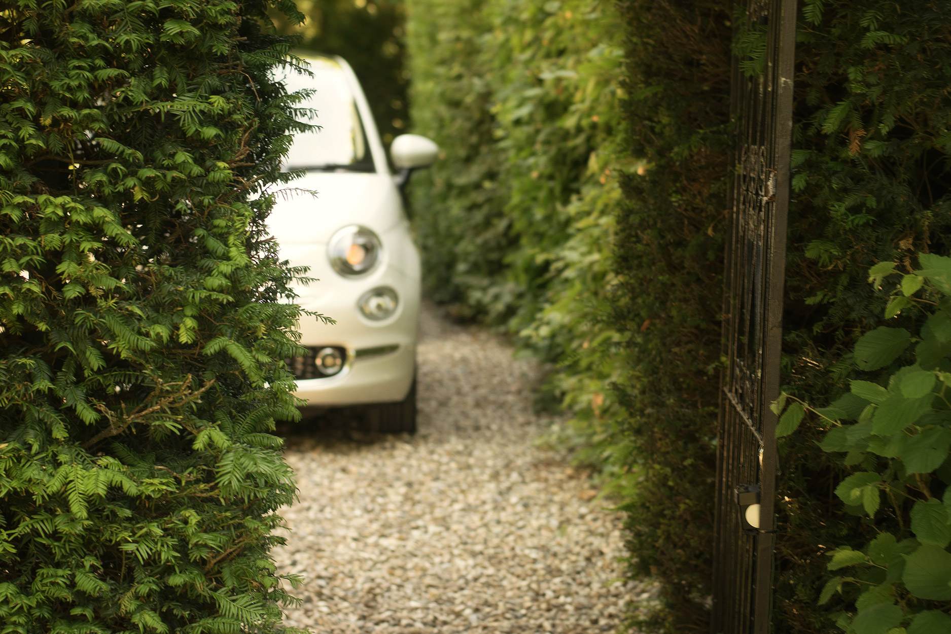 Fiat500 sitting on drive behind bushes