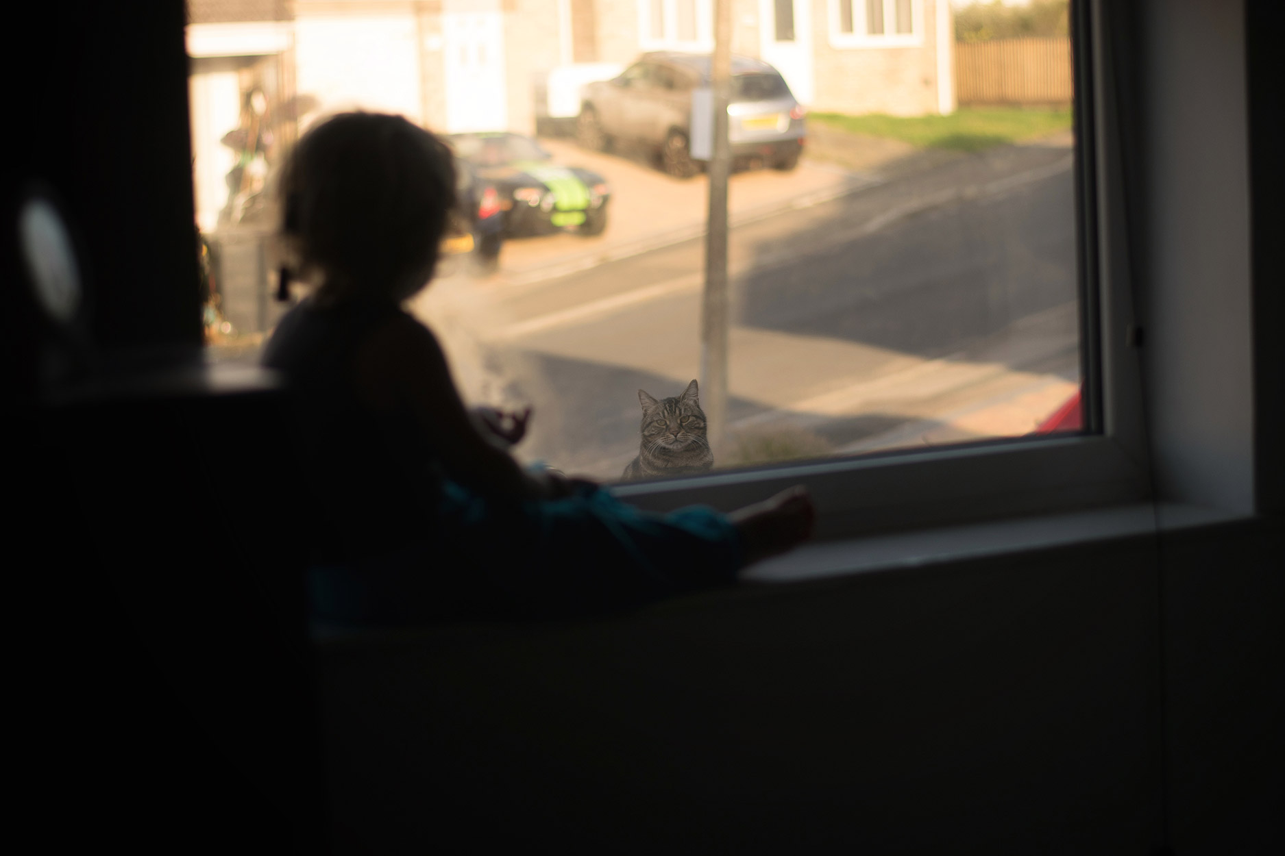 Toddler sitting on window sill looking at neighbour's cat sitting on the garage outside in the street
