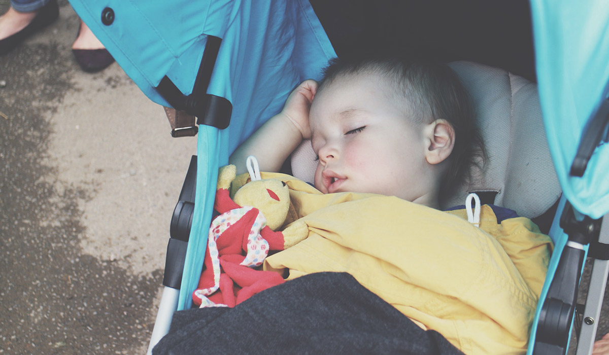 Toddlers' Day Out @ Exmoor Zoo, North Devon - Toddler napping in blue Hauck pushchair
