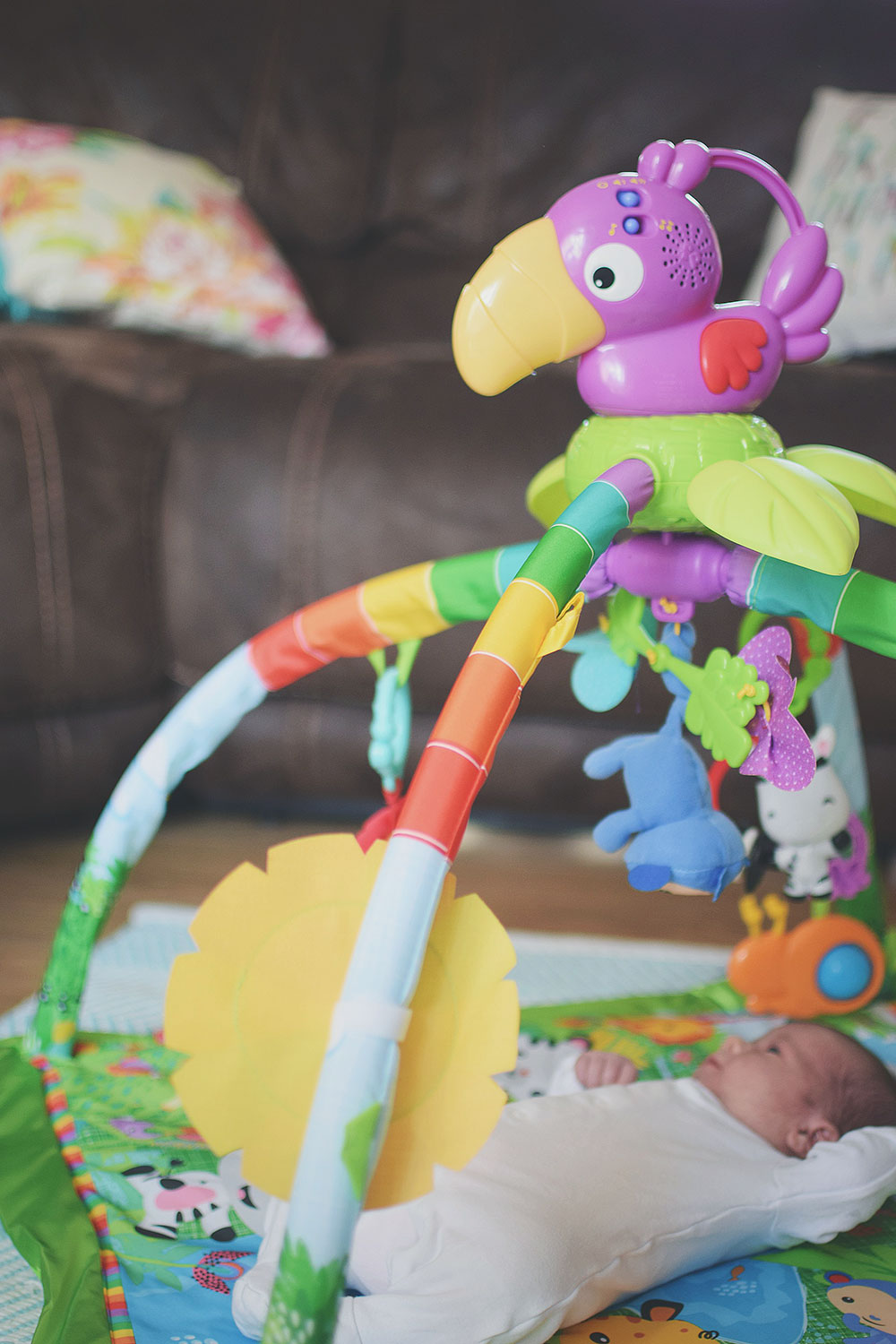 Jesse Loves.. the Fisher-Price Rainforest Deluxe Activity Gym - Toddler and baby brothers laughing and playing