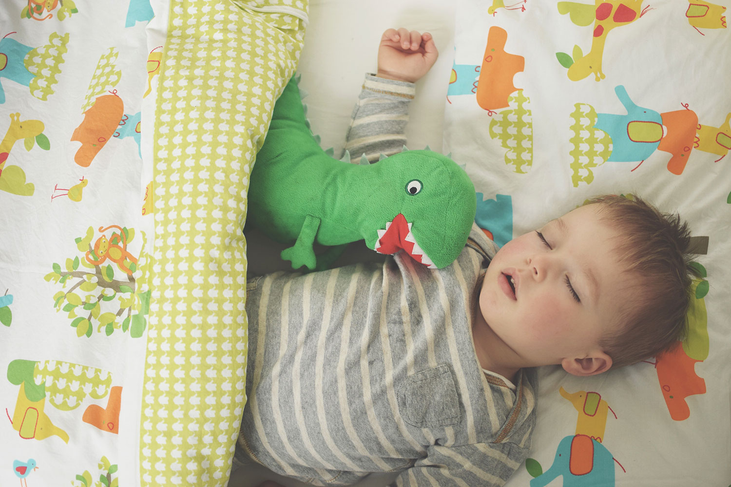 Review: Jolly Jungle Gro To Bed for Cot Beds