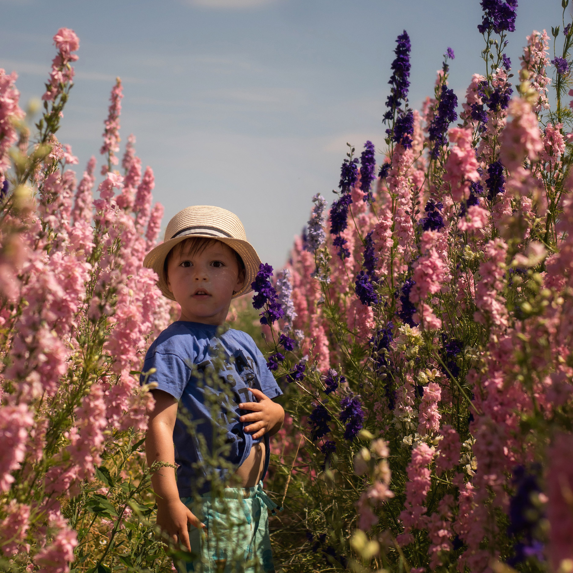 Young family with two brothers visiting the flower petal confetti fields to see the rainbow flowers wearing Bobo Choses beach balls romper, Mini Rodini earth t-shirt, Bobux sandals and trilby hats
