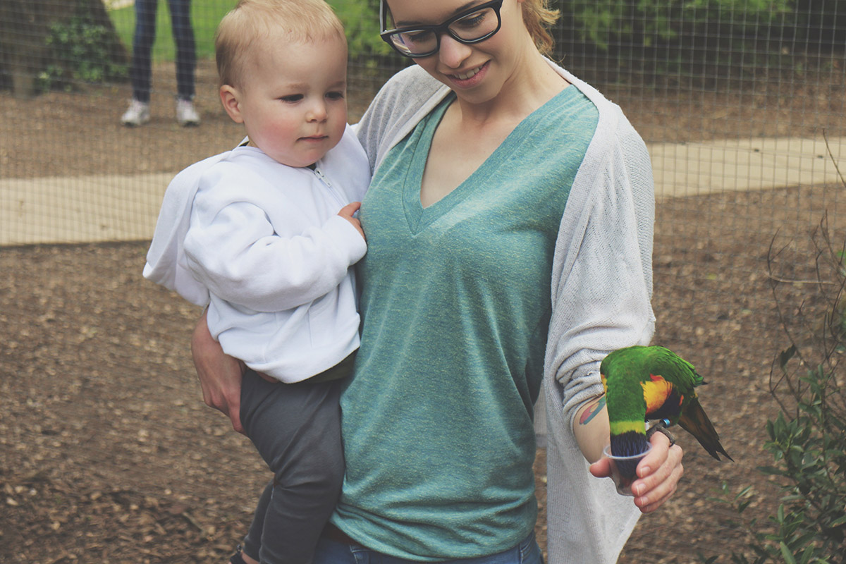 Toddlers' Day Out - Longleat Safari & Adventure Park; Feeding the Rainbow Lorikeets
