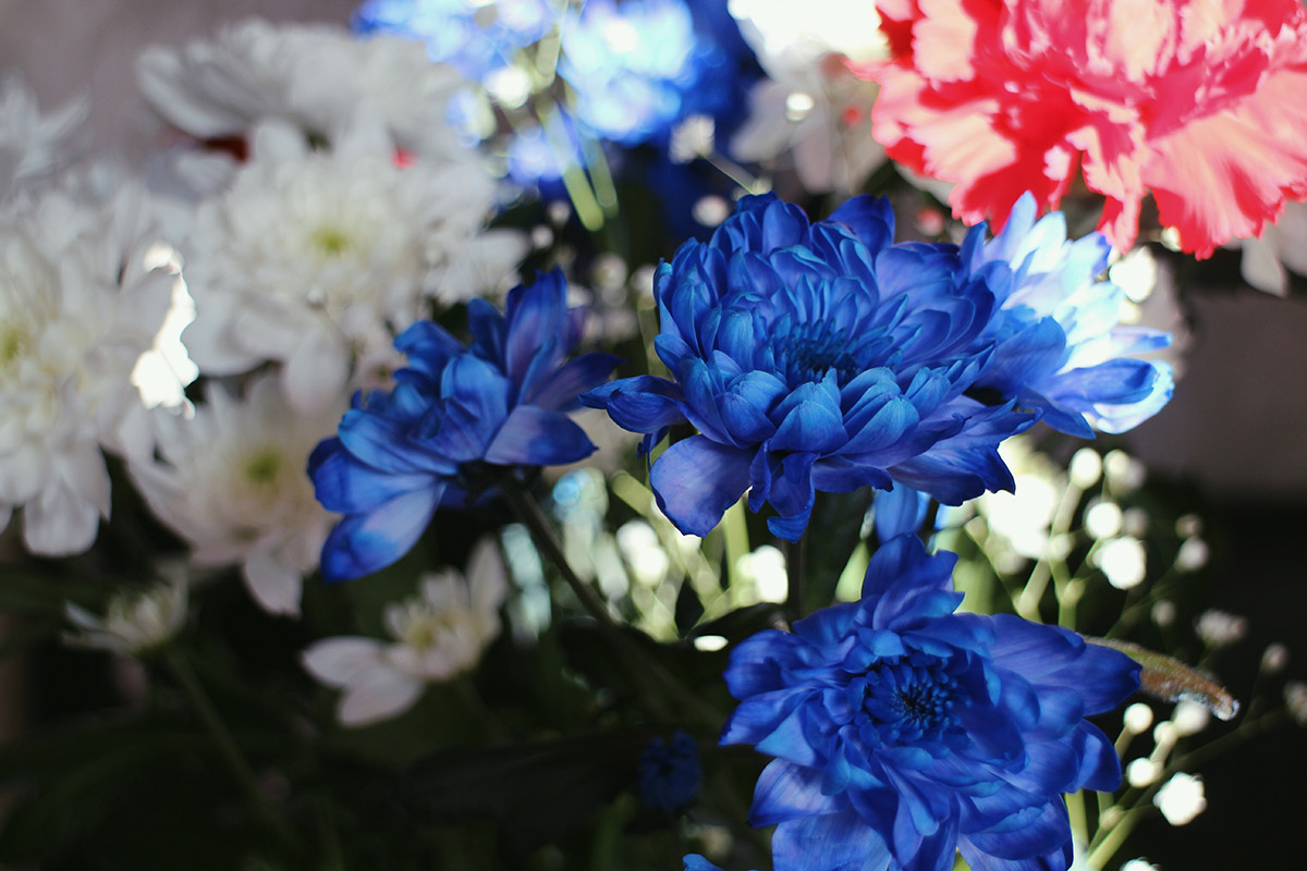 Beautiful blue & white Mothers Day flowers