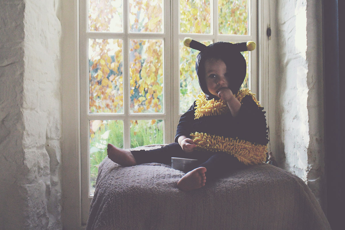 My Busy Bumble Bee — Toddler in his Halloween bumble bee outfit/costume from Homesense UK