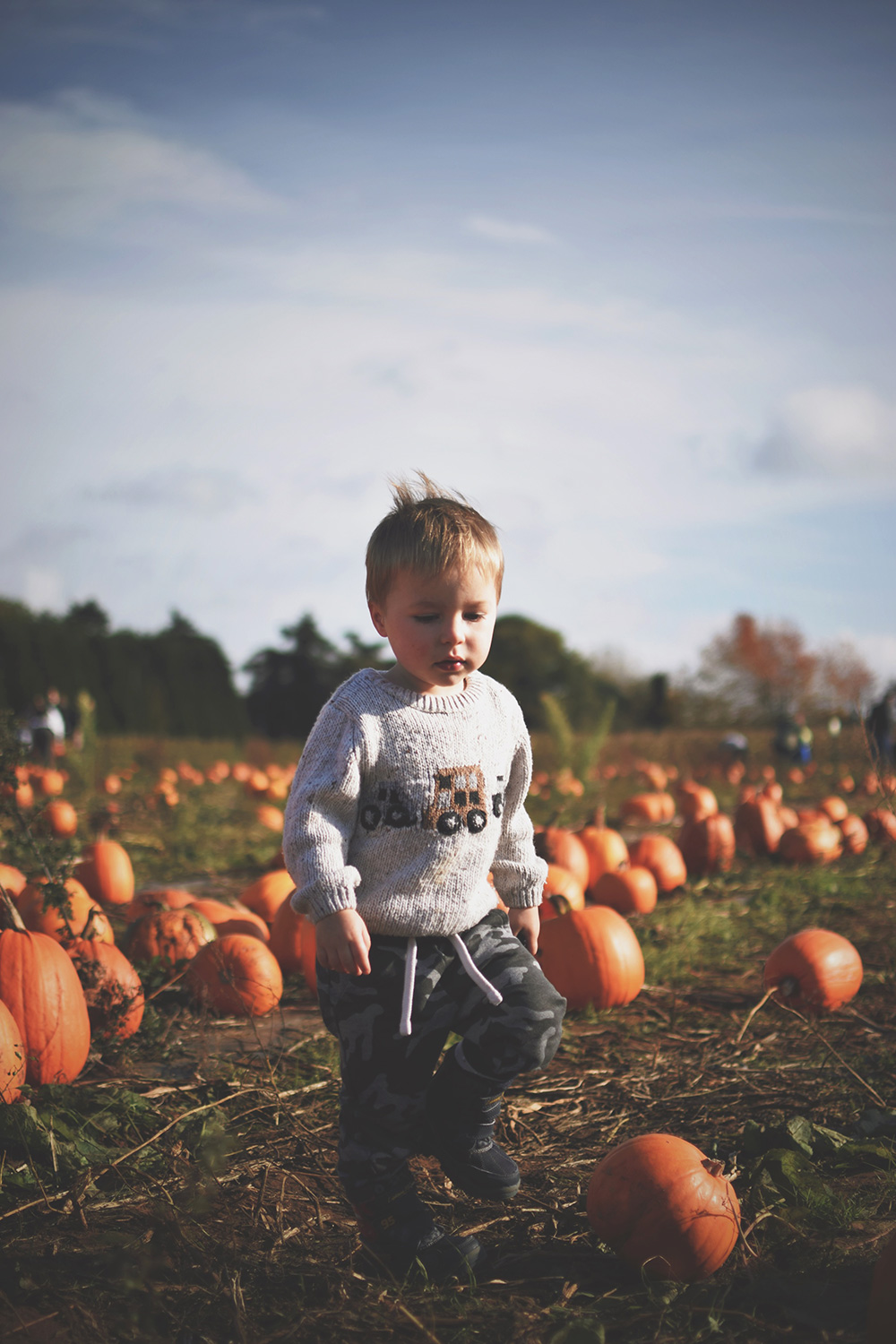 Picking Pumpkins & Scary Jabs — The Ordinary Moments #13; Mother and son together looking at the animals at Millets Farm, Oxfordshire