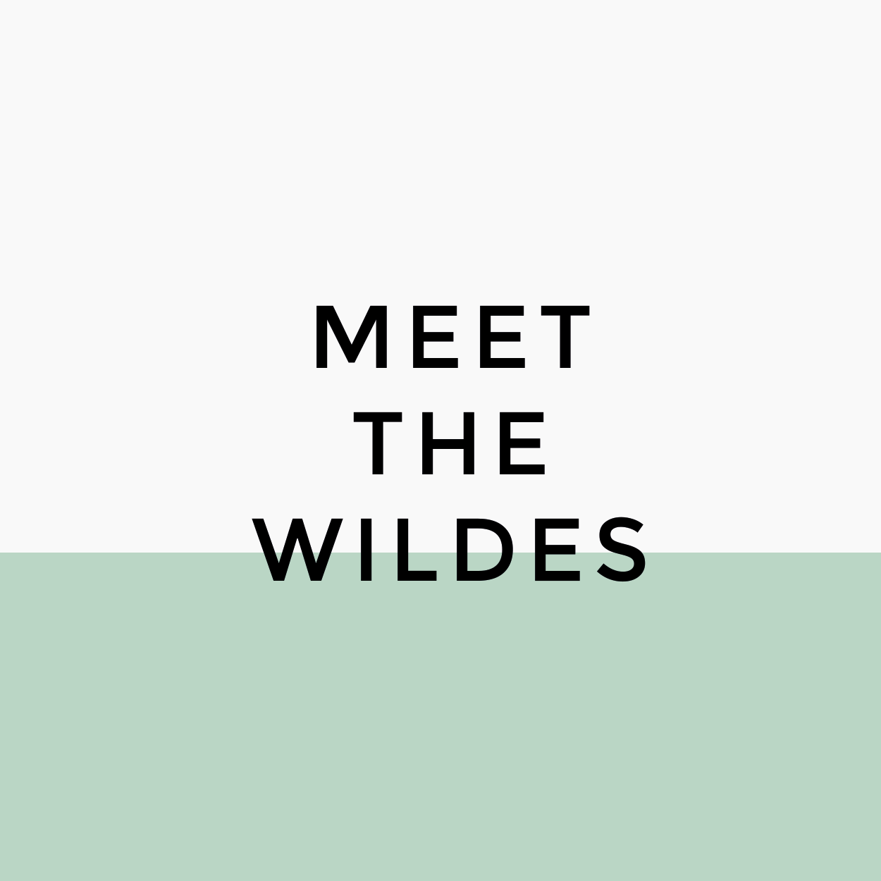 Blog rebranding for Meet the Wildes, including theme implementation - Designed by Wiltshire-based graphic designer, Kaye Huett