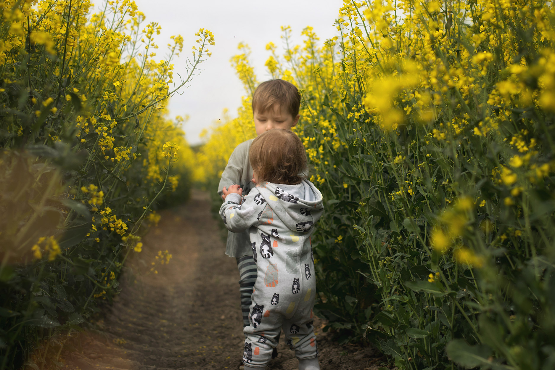 Photoshoot of Mum and two boys amongst yellow rapeseed fields, playing and cuddling her boys who are wearing Bobo Choses, H&M and Filemon Kid