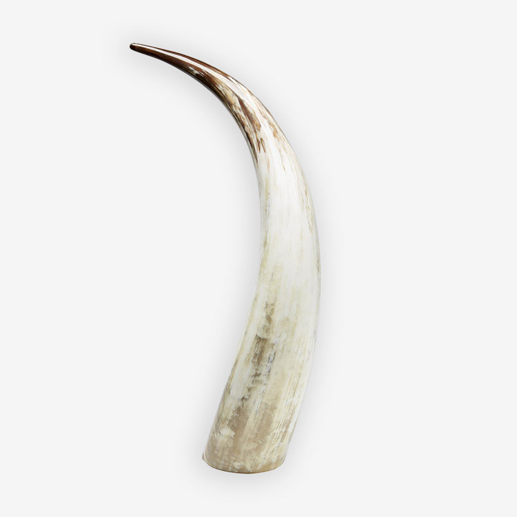 Large Gold & White Horn from Uganda Collection - Homesense UK