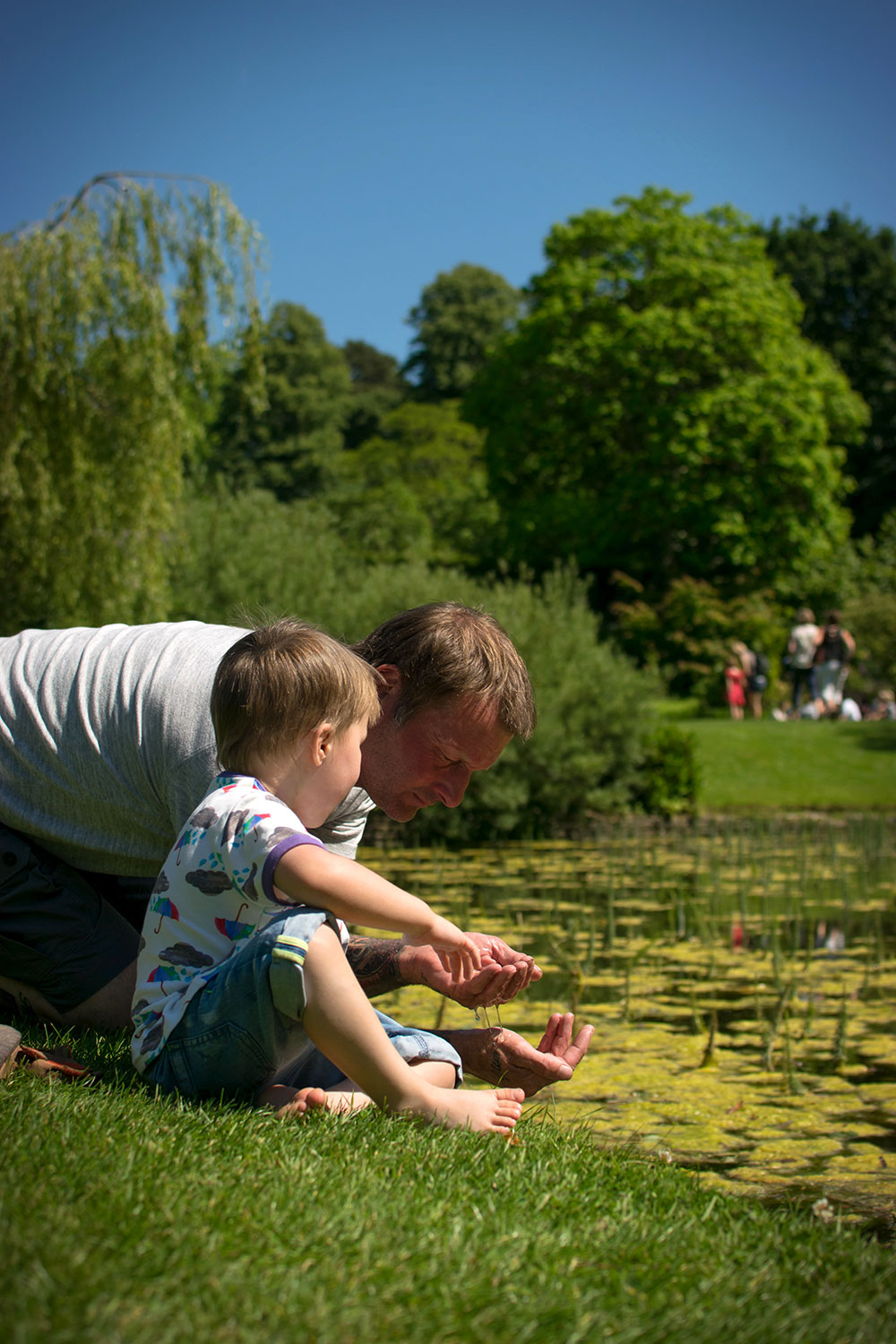 Of Wildlife and Water {To Adventure #2} - 3 year old boy wearing The Bunting Tree rainclouds and umbrellas t-shirt finding frogs and tadpoles in the ponds on a Summer's day at Dyrham Park, Bath