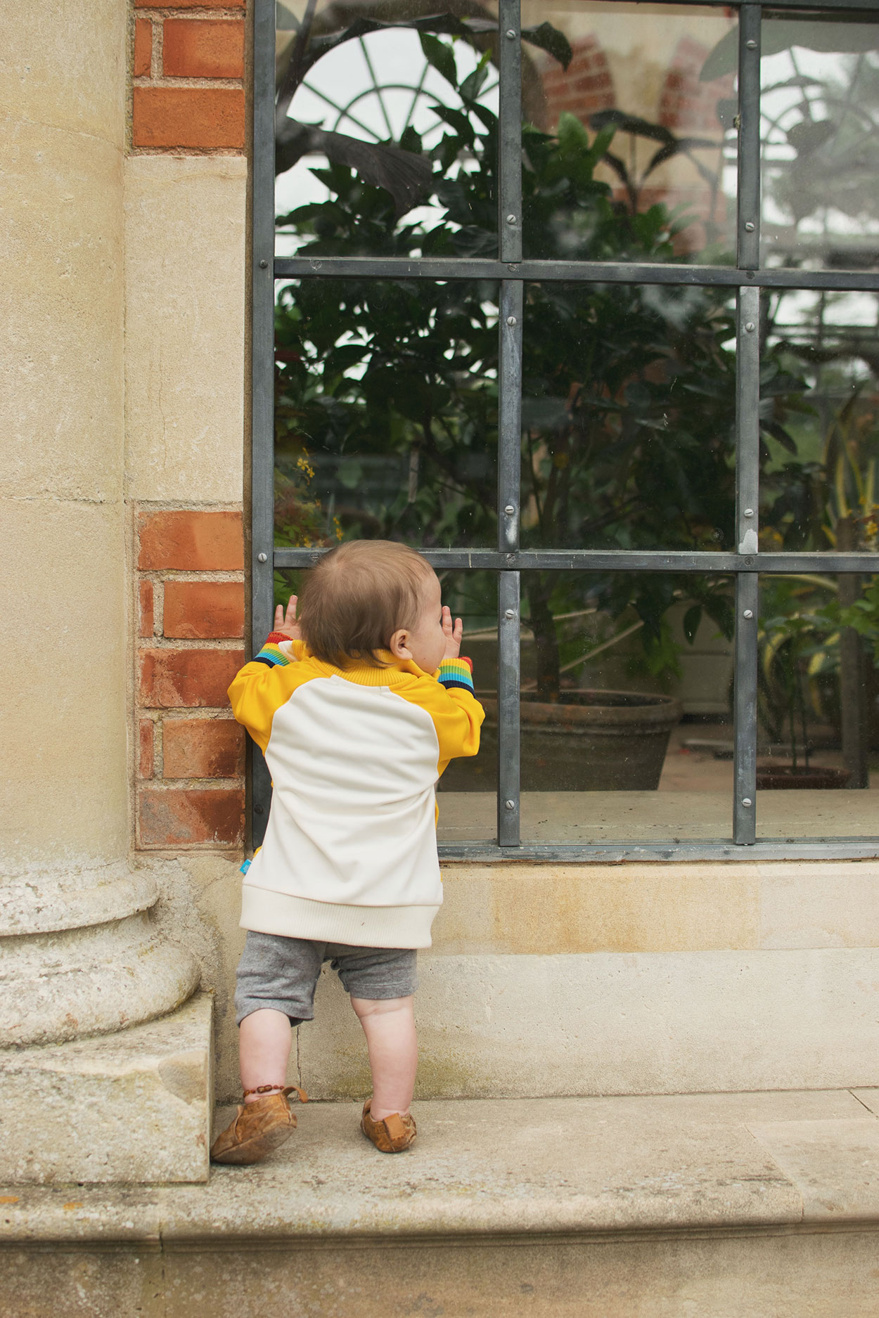 Young baby boy wearing Easy Peasy pirate leather shoes and Little Bird jacket looking through the window of the orangery at Tyntesfield Estate, Hampshire, National Trust