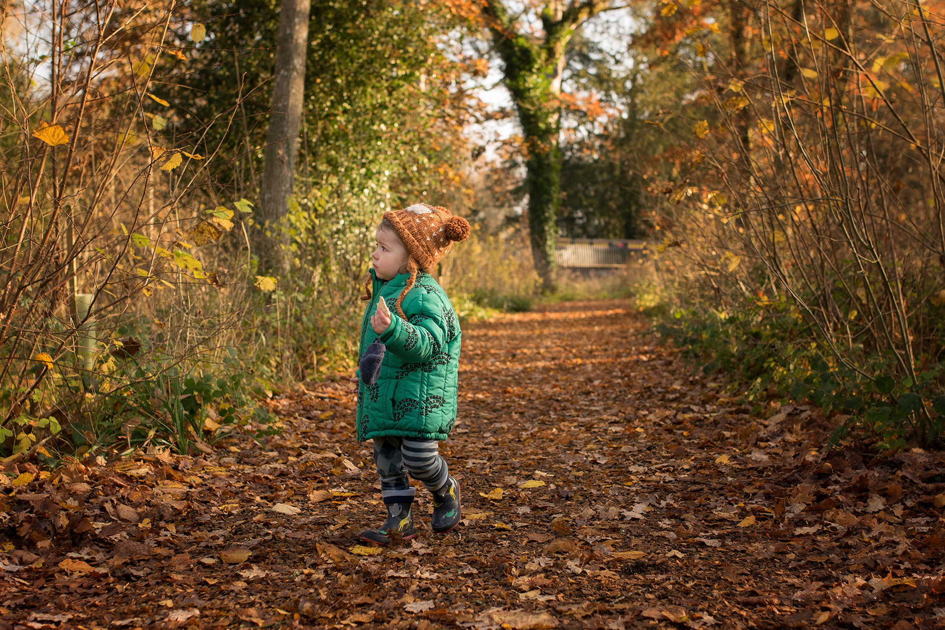 Two young brothers walking at Westonbirt Arboretum, Gloucestershire, in Autumn wearing Rylee and Cru and Bobo Choses collecting leaves